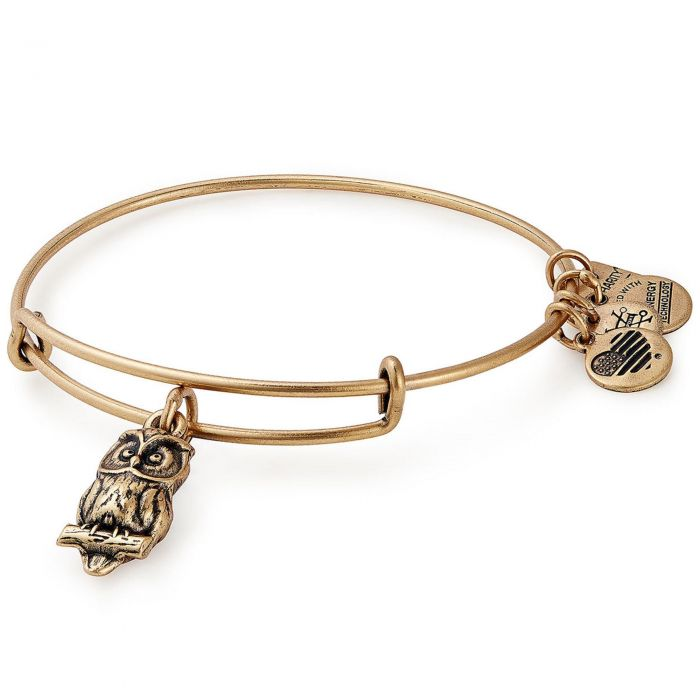 Owl Charm Bangle | Gold