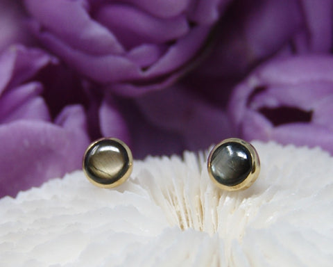 Black Star Sapphire Studs Earrings