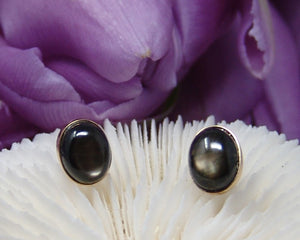 Black Star Saphire Studs