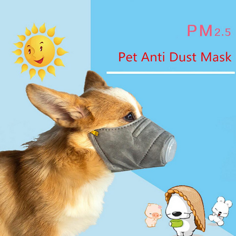 Dog Face Protection