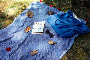 Blue Shawl and Blue Bag Combine