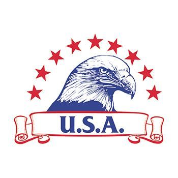 Eagle head with 10 stars arched over the top and a banner below that says U.S.A. temporary tattoo
