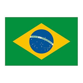 Flag of Brazil, green with yellow diamond in the middle, inside of that the Earth; temporary tattoo.