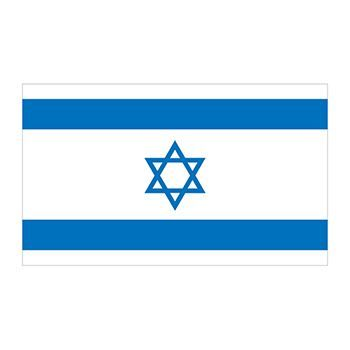 Flag of Israel with a star of David in the center temporary tattoo.