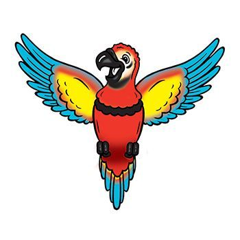 Macaw parrot temporary tattoo.