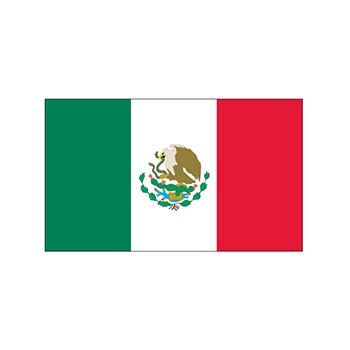 Mexico flag, green, white, and red vertical bars with en emblem in the center; temporary tattoo.