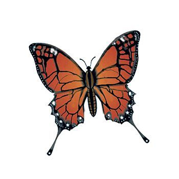 Realistic looking monarch butterfly temporary tattoo.