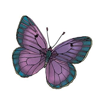 Purple Butterfly Temporary Tattoo