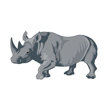 Rhinoceros Temporary Tattoo