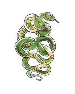 Green Snake Temporary Tattoo
