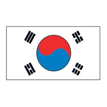 South Korea Flag Temporary Tattoo