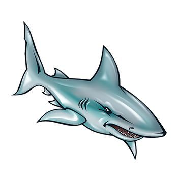 White Shark Temporary Tattoo