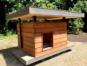 Pet Houses & Shelters