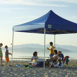 Caravan Canopy 10-By-10-Foot Displayshade Kit Commercial Canopy, No Walls