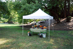 King Canopy Goliath Instant Canopy 10 x 10 - Great for the Beach, Weddings, Events and Parties