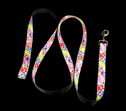 Handcrafted Multi-Colored Paw Nylon Webbing Fashion Dog Leash/ Lead
