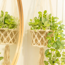 Load image into Gallery viewer, Macrame Pot Plant Holder