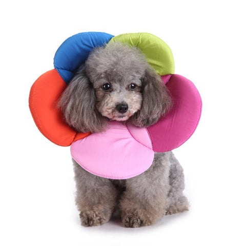 Pet Protection Collar Dog Protection Cover