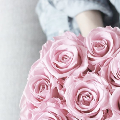 long-lasting-roses-how-we-adore-pink-roses-in-history-fashion-and-more