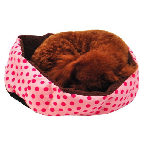 Colorful Leopard print Pet Cat and Dog bed Pink, Blue, Yellowish brown, Deep pink