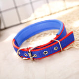 Pet Collar Adjustable Leather Basic for Large Medium Small Dogs