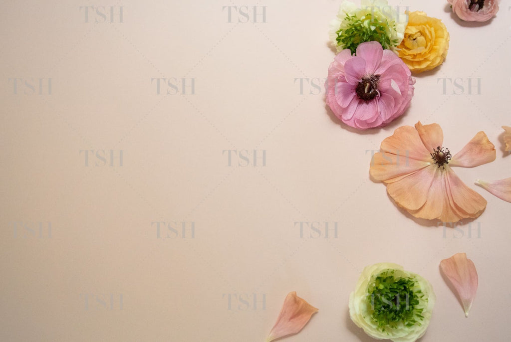 Pastel pink, peach yellow, and green flowers on blush background.