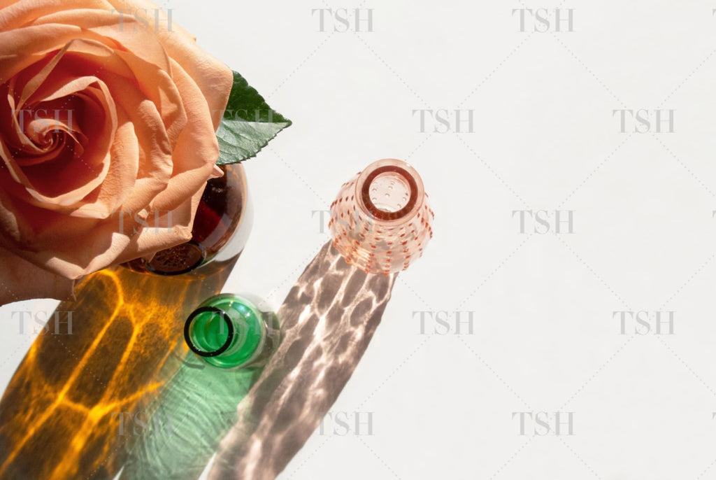 Peach rose with amber, green, and pink glass vase shadows still life on minimalist white background