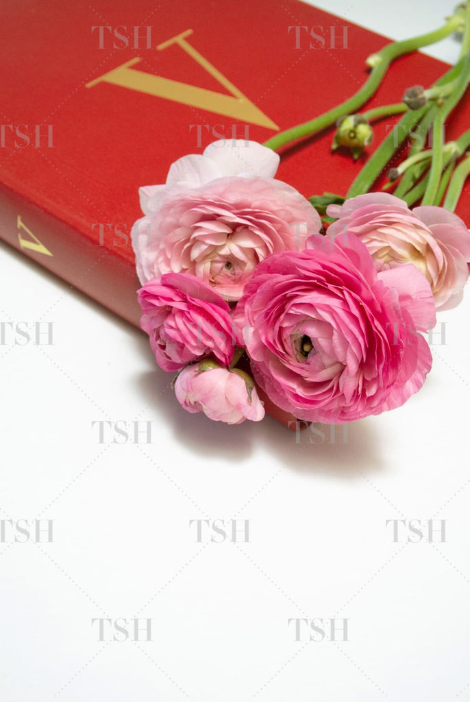 Red fashion book with pink ranunculus flowers on a white background.