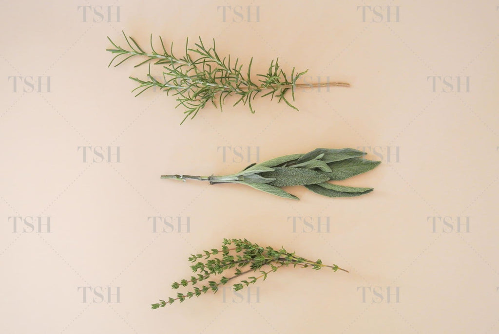 Fresh rosemary, sage, and thyme herbs on nude peach background.