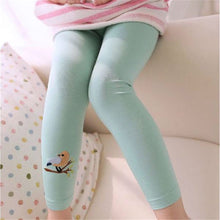 Load image into Gallery viewer, Birdy Leggings, Mint, 3T - CeCe & Jax