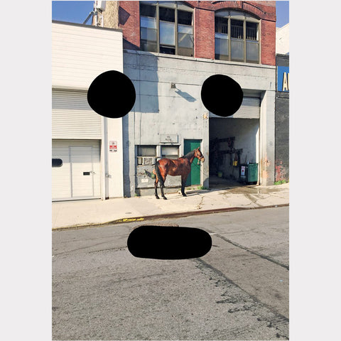 Peter Liversidge // Horse on West 37th Street (2017)
