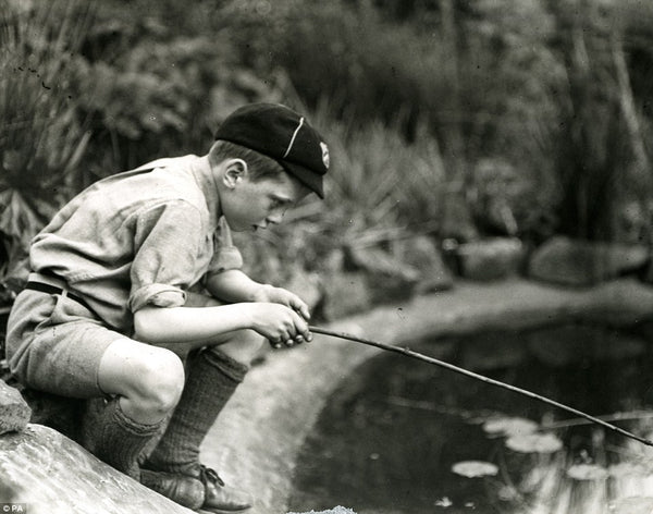 young david attenborough
