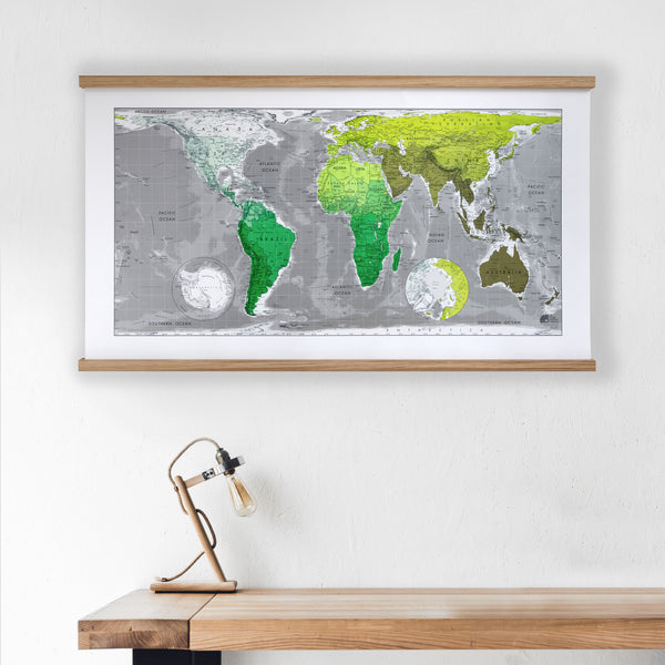 equal area projection world map