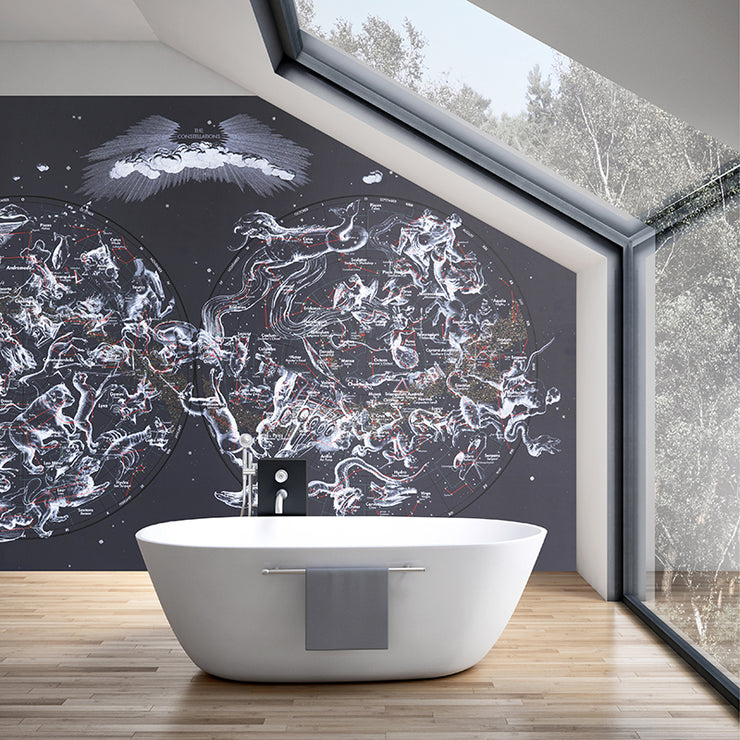 STAR MAP WALLPAPER MURAL
