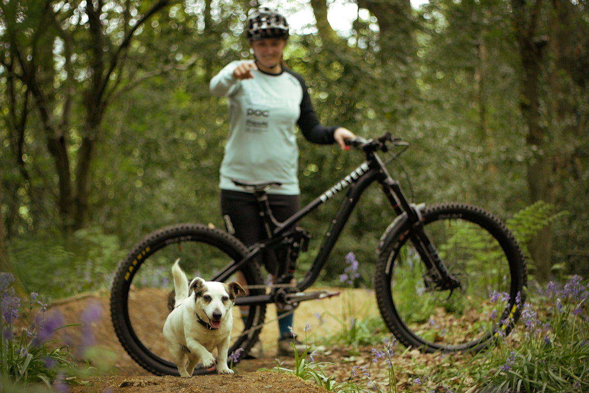 Privateer 161 Mountain Bike