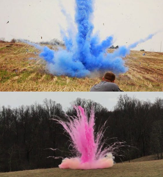 Tannerite Gender Reveal Powder Explosive Shooting Target