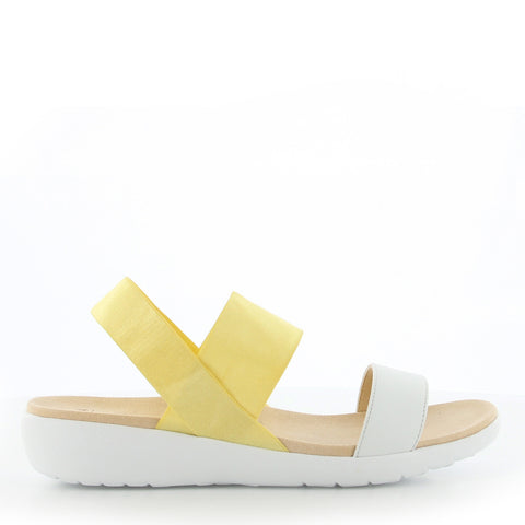 UPRISE W - WINTER WHITE LEMON ELASTIC