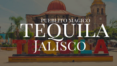 Destination: Let's have a drink… or two in Tequila, Jalisco!