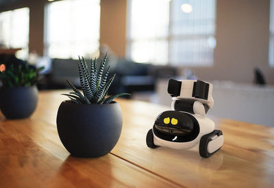 Gomer Soft Robotic Friendly Robot