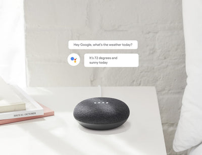 Google Home Mini Smart Assistant Speaker