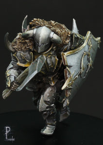 Toorn, the chaos warrior