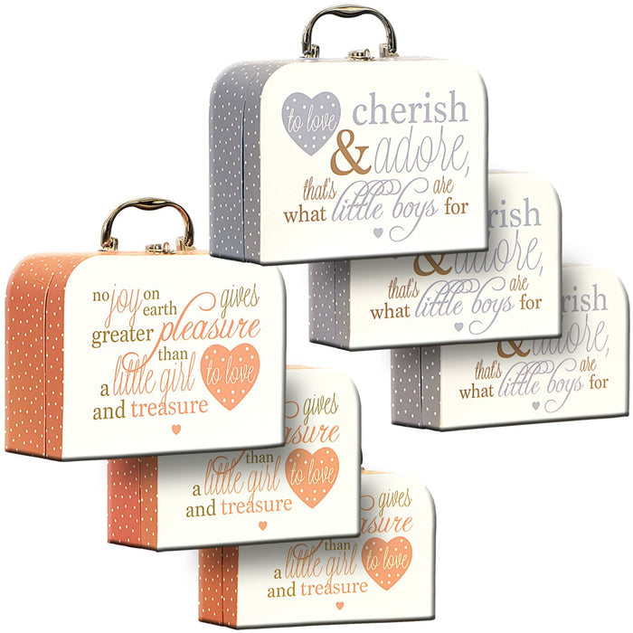 Baby Carry Cases Set of 3