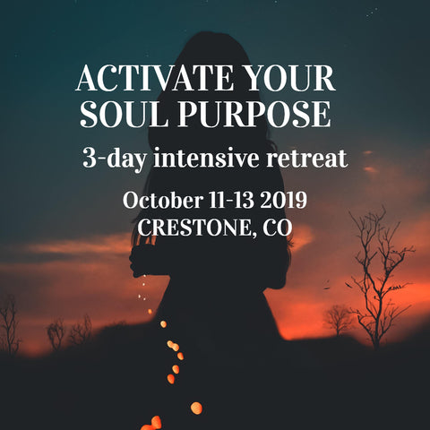 Soul Activation Workshop Down Payment