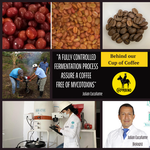 Cauca Green Coffee Beans x 16oz