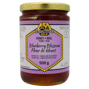 Dutchman's Gold Blueberry Liquid Honey 500g