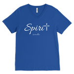 Spirit Men's V-Neck - Spiritualitees