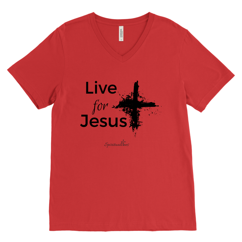 Live for Jesus Men's V-Neck