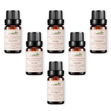 Load image into Gallery viewer, Lagunamoon Aromatherapy Essential Oils Gift Set - 100% Pure Premium Therapeutic Grade Oils kit -Lavender, Tea Tree, Eucalyptus, Lemongrass, Orange, Peppermint