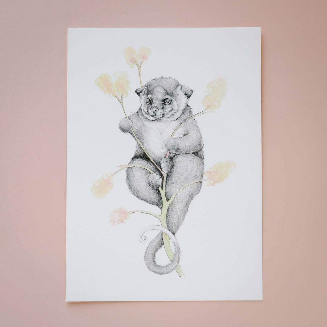 Possum Magic Giclée Print