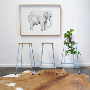 Mae the elephant artwork by artist Emma Morgan